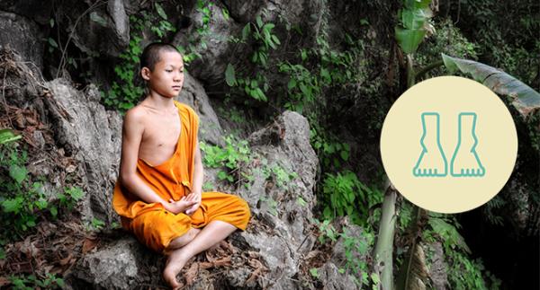 domingo na floresta meditação